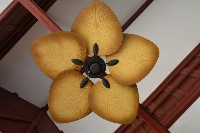Beat the summer heat with a ceiling fan!